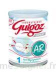 GUIGOZ EXPERT AR 1 Lait pdre B/800g à Libourne
