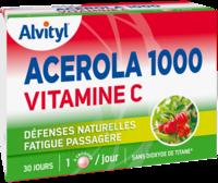 Govital Acerola 1000 à Libourne