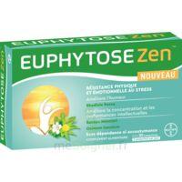 Euphytosezen Comprimés B/30 à Libourne
