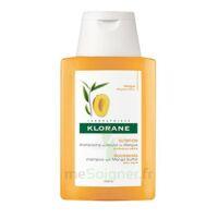 Klorane Mangue Shampooing Nutrition Cheveux Secs 100ml à Libourne