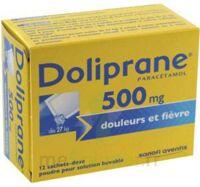 DOLIPRANE 500 mg Poudre pour solution buvable en sachet-dose B/12 à Libourne