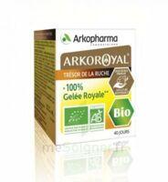 Arkoroyal 100% Gelée Royale Bio Gelée Pot/40g à Libourne
