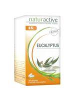 Naturactive Gelule Eucalyptus, Bt 30 à Libourne