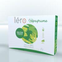Léro Hepagrume Solution Buvable Complément Alimentaire 20 Ampoules/10ml à Libourne