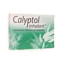 Calyptol Inhalant, émulsion Pour Inhalation Par Fumigation à Libourne