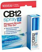 Cb 12 Spray Haleine Fraîche 15ml à Libourne
