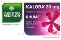 KALOBA 20 mg Cpr pell Plq/21 à Libourne