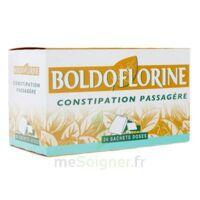 Boldoflorine, Mélange De Plantes Pour Tisane En Sachet-dose B/24 à Libourne
