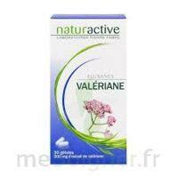 Elusanes Valeriane 200 Mg, Gélule Pilul/30 à Libourne