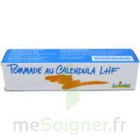Calendula Lhf Pom T/20g à Libourne