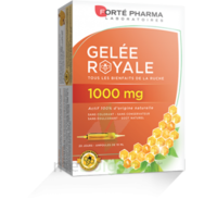 Forte Pharma Gelée royale 1000 mg Solution buvable 20 Ampoules/10ml à Libourne