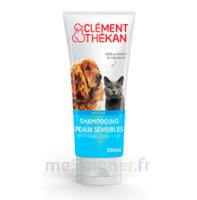 Clément Thékan Shampooing Peaux Sensibles T/200ml à Libourne