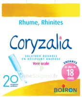 Boiron Coryzalia Solution Buvable Unidose B/20 à Libourne