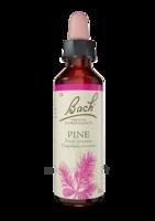 Fleurs De Bach® Original Pine - 20 Ml à Libourne