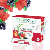 Naturactive Phytothérapie Fluides Solution Buvable Circulation 2b/20 Sticks/10ml à Libourne