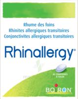 Boiron Rhinallergy Comprimés B/40 à Libourne