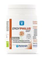 Nutergia Ergyphilus Gst Gélules B/60 à Libourne
