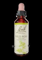 Fleurs De Bach® Original Wild Rose - 20 Ml à Libourne